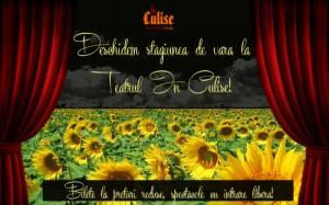 Stagiunea de vara In Culise