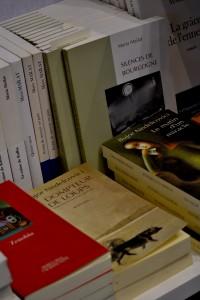 Salonul de carte Paris 2013 4