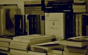 Salonul de carte Paris 2013 6